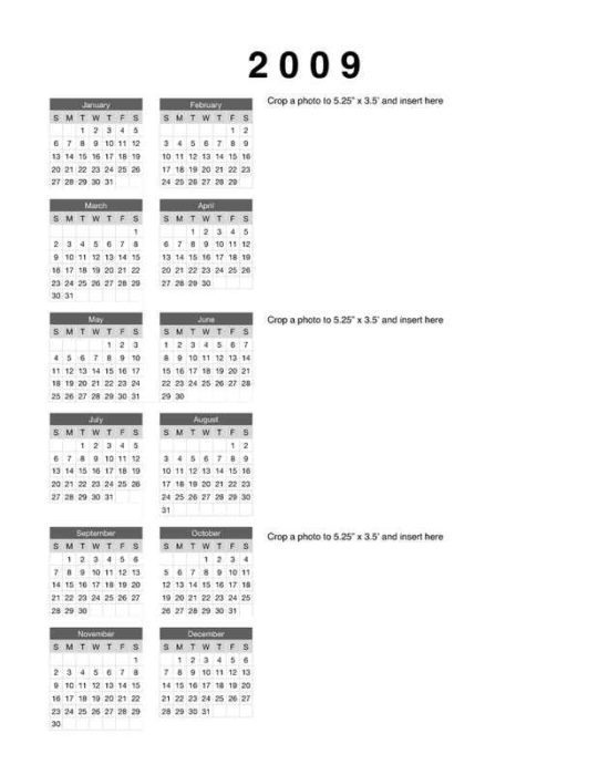 2009 Yearly Calendar with 3 Photos