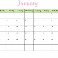 2010 Monthly Calendar in Green and Pink