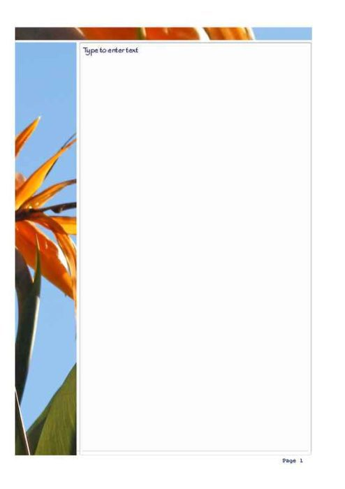 Bird of Paradise Photo Stationery