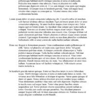 Blank Drama Template with French Margins