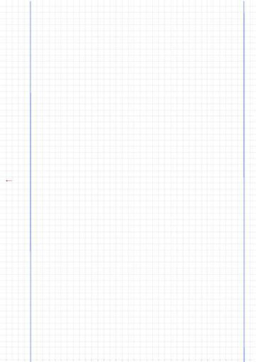 Blank Graphing Paper with Dual Margins