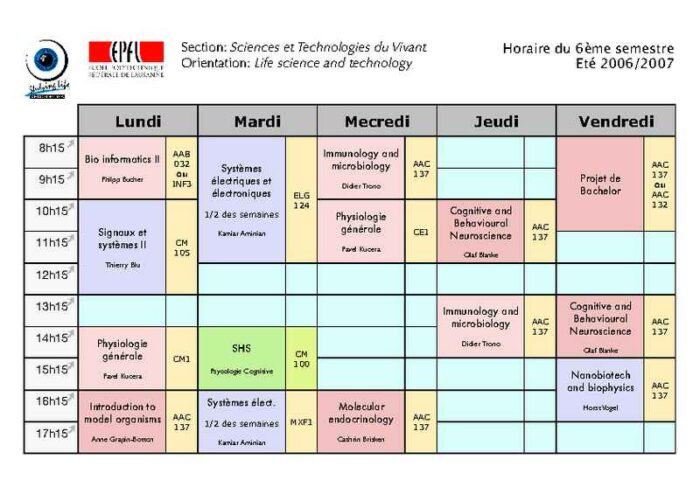 Color-Coded Semester Course Schedule