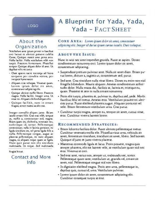 Fact Sheet Flyer for Social and Political Issues