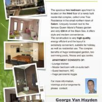 Greener Grass Real Estate Flyer