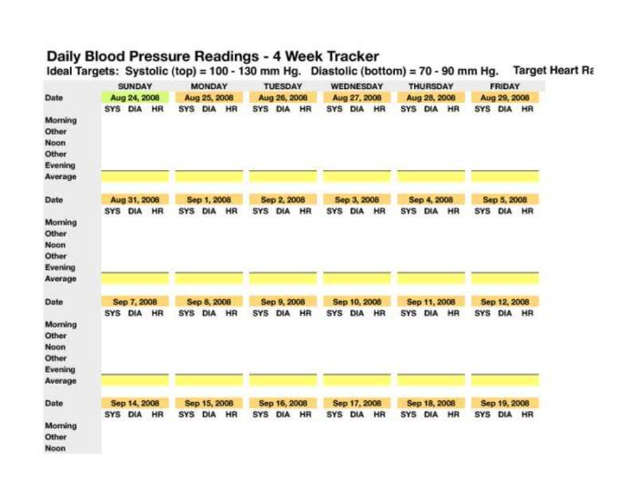 Monthly Blood Pressure Tracker