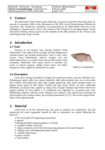 Scientific Lab Report Inner Page