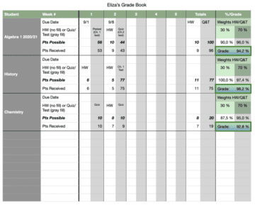 Weekly Detailed Grade Book for classroom- or home-based classes